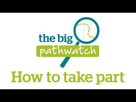 Mobile app launched for Big Pathwatch