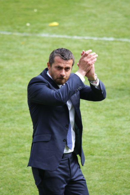 Fulham Appoint Jokanovic As Head Coach